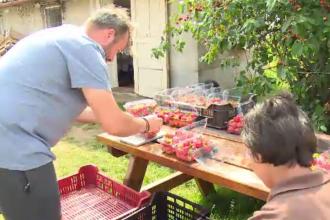 Avantajele pe care le au producătorii de fructe și legume care se asociază