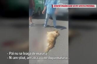 """Explicaţia bărbatului care și-a târât câinele pe șosea: """"Nu avea loc în mașină"""""""