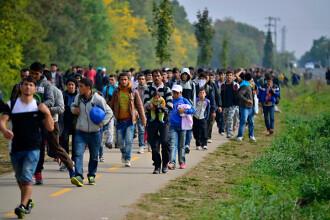 CE va sesiza Curtea de Justiție în legătură cu acțiunile Ungariei față de migranți