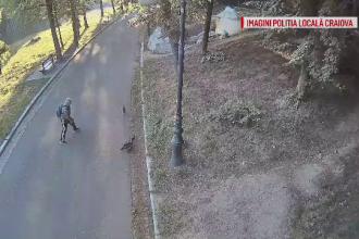 Operațiune complexă a polițiștilor locali din Craiova, după furtul unei rațe sălbatice din parc