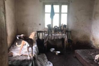 Scenele descoperite în casa unei femei din Suceava, despre care vecinii credeau că a murit