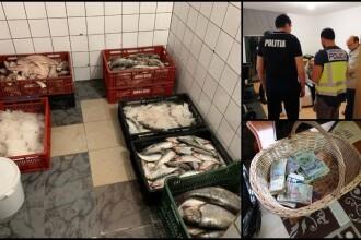 30 de tone de peşte confiscat după sute de percheziții în România și Europa. Ce s-a descoperit