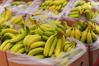 Zeci de kilograme de cocaină, descoperite într-o încărcătură de banane. Valoarea lor e uriașă