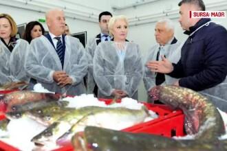 E.U. YES LA VOT. Bursa de pește, de 6 milioane de €, închisă după inaugurare
