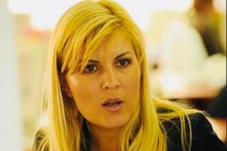 Frații acuzați că i-au dat mită Elenei Udrea au scăpat definitiv de proces