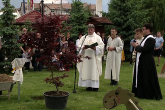 Pădurea din Transilvania creată special pentru Papa Francisc.