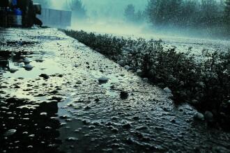 Furtunile puternice au compromis culturile agricole în vaste regiuni ale țării. Cele mai afectate zone