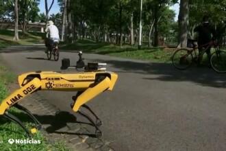 VIDEO Distanțarea socială, menținută cu ajutorul câinilor robotizați