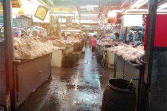 Autoritățile din Wuhan au interzis consumul de animale sălbatice