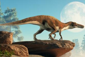 """""""A fost mai grav decât credeam până acum"""". Ce s-a aflat despre dispariția dinozaurilor"""