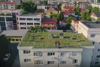 Agricultura urbană devine o modă în România. Cât costă să ai o grădină pe balcon