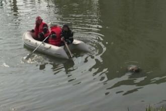 Cadavrul unei femei a fost descoperit intr-un rau din Bihor