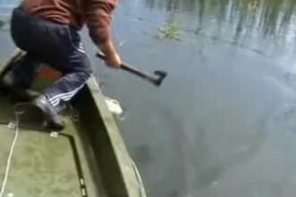 Pescuitul, transformat in macel in Delta Dunarii