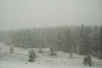 Iarna se dezlantuie. Viscol si ninsori in jumatate din tara