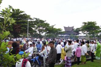 Regula de aur in Indonezia: nu te poti casatori pana nu plantezi un copac!