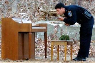 Cine ar lasa un pian de cateva zeci de mii de dolari intr-o padure?