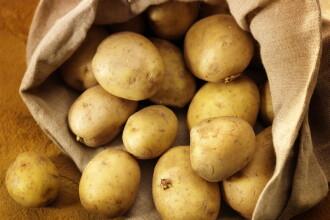 Cartofi scumpi si importati din Egipt sau Turcia. La noi nu se mai fac