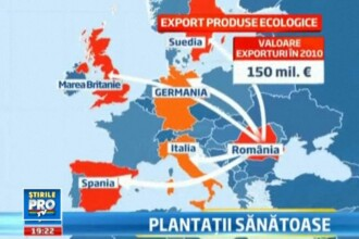 Romania are 10.000 de ferme certificate in agricultura eco. Exportam de 60 de milioane de euro anual