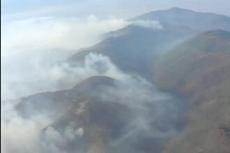 Focarele din muntii Sureanu s-au extins la litiera de pădure de foioase