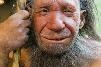 Omul de Neanderthal a disparut pentru ca era prea destept. Cum a devenit