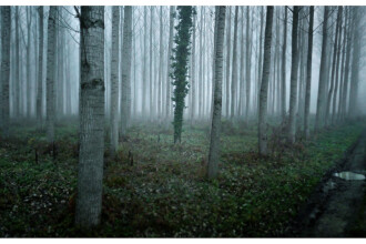 Galerie FOTO. O localitate din Romania, printre cele mai izolate locuri din lume