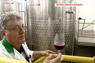 Patria vinului, partea 1: Primul reportaj realizat in crama de 150.000 de litri a guvernatorului BNR