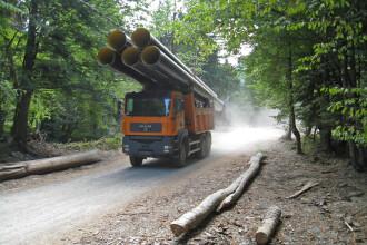 Locuitorii Clujului sunt asteptati in strada sa lupte pentru resursele naturale romanesti