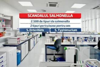Scandalul puilor cu salmonella de la Avicola Calarasi. 65 de tone de carne, retrase din magazine