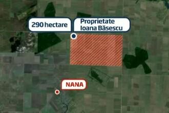 Ancheta pe terenul Ioanei Basescu. Ponta anunta comisie parlamentara in