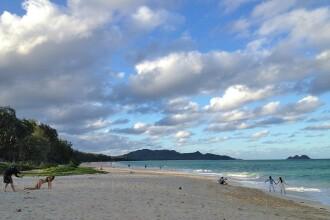Doi soti erau fotografiati pe o plaja exotica in luna de miere. Ce se intampla langa ei