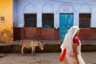 Pedeapsa desprinsa din Evul Mediu. O femeie a fost plimbata goala pe un magar printr-un sat din India