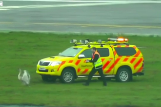 Motivul incredibil care a dus la decolarea intarziata a 20 de avioane. Incidentul a avut loc pe Aeroportul Heathrow