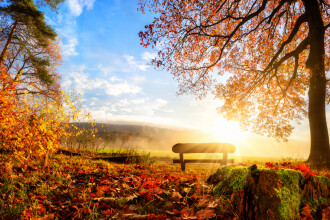 Saptamana incepe cu soare, vreme placuta si temperaturi de primavara. Prognoza meteo pana joi