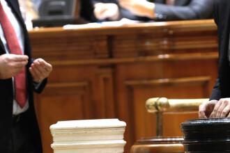 Camera Deputatilor are nevoie de un nou set de bile. Ipoteza oficiala: 22 de parlamentari au plecat cu ele acasa