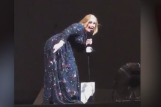 Adele s-a speriat de un liliac, in timpul unui concert in Mexic.