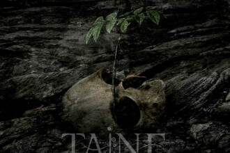 Trupa TAINE a lansat videoclipul piesei