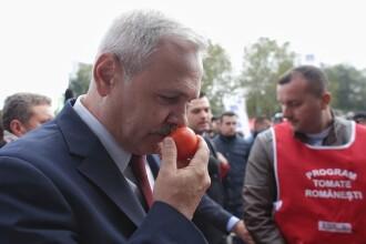 """Deputatul PSD Adrian Solomon: """"Şi pe Ceauşescu l-au sfătuit unii să facă miting"""""""