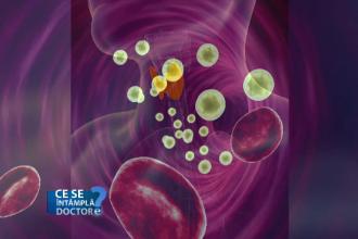Tiroidita auto-imună, boala care poate duce la infertilitate
