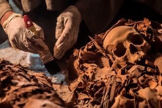 The Independent: Craniile de 300.000 de ani care ar putea rescrie istoria originilor omului