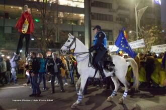 Explicațiile Jandarmeriei. De ce au folosit cai la protestele de duminică din București