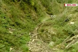 Cum să cobori din pădure 1.000 de camioane cu lemn tăiat ilegal şi să nu te vadă nimeni