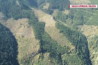 Jaf pe zeci de mii de hectare de pădure. Zona în care munți întregi au rămas fără copaci