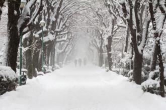 Vin ninsorile în aproape toată țara, de duminică seara. Zonele vizate de avertizare
