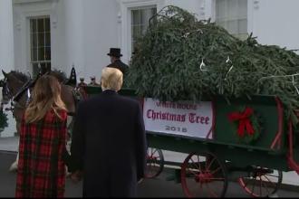 Bradul de Crăciun al Casei Albe, adus cu trăsura de la sute de kilometri depărtare