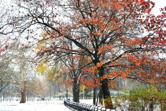 Vremea 22 noiembrie 2018. În weekend, temperaturile urcă ușor