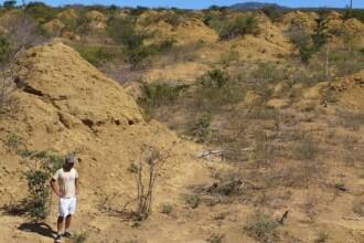 O ''minune biologică'' vizibilă din spaţiu a fost descoperită în Brazilia