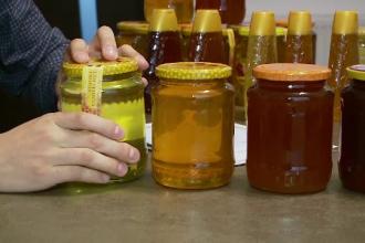 Autorităţile vor da 16 milioane € anual pentru miere în școli. Reacția apicultorilor