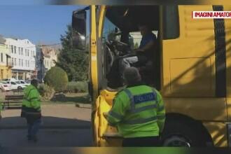 Bradul de Crăciun din Lugoj a fost confiscat de polițiști. Ce se va întâmpla cu el