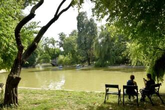 """Artiștii militează împotriva """"mutilării"""" parcului Cișmigiu printr-un proiect inedit"""