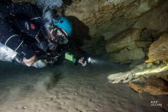 Dinții unor creaturi preistorice, descoperiți în adâncurile mării. Care sunt ipotezele
